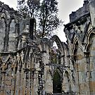 Ruins of St. Mary's Abbey, York-2 by PhotogeniquE IPA