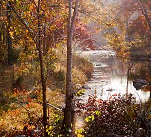 Clayton Lake Creek View by Carolyn  Fletcher