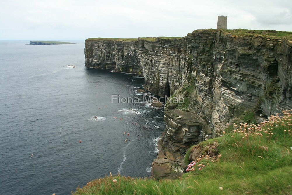 Kayakers, Marwick Head by Fiona MacNab