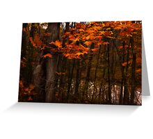 Bear Creek Experience  Greeting Card