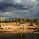 The Rains are Coming by Chris Cohen