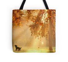 Chasing sunbeams Tote Bag