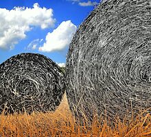 Hay is For Horses by Donnie Voelker