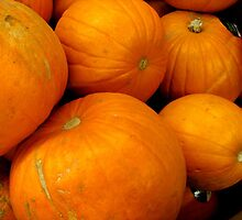 ORANGE PUMPKINS by gothgirl