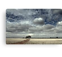 A Tree In A Field Canvas Print