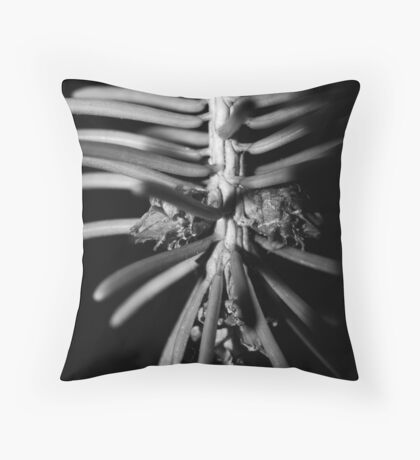 small world 1 Throw Pillow
