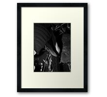 small world 4 Framed Print