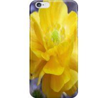 Lemon Sherbit iPhone Case/Skin