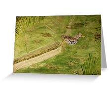 Spotted Sandpiper on the Kinnickinnic River Greeting Card