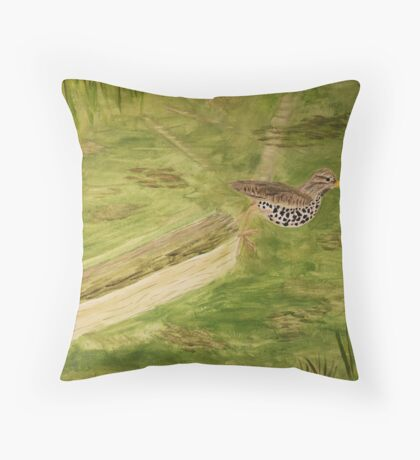 Spotted Sandpiper on the Kinnickinnic River Throw Pillow
