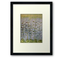 The Dancing Cabbage Weeds Framed Print