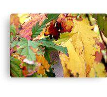 Autumn puzzle Canvas Print