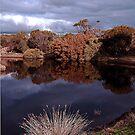 Lake Avondale by NolsNZ