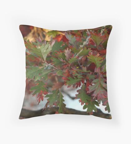 Red and Green Leaves over the Oconomowoc River Throw Pillow