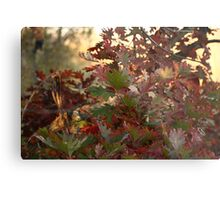 Red and Green Fall Leaves II Metal Print