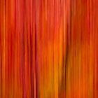Fall blur by Daniel  Parent