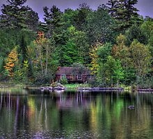 Cabin In The Woods by Sharon Batdorf