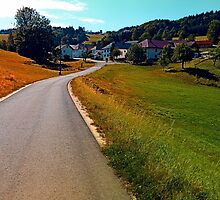 Country road, take me nowhere by Patrick Jobst