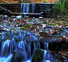 Autumn at Largo Springs~ For Ron by cherylc1
