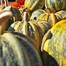Pumpkin Green by Randall Robinson