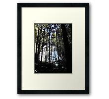 Nelson Falls Framed Print