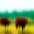 4 Red Trees by Anne  McGinn