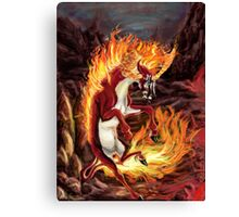 Fun with Fire Canvas Print
