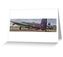 """Just Jane"" Panorama - HDR Greeting Card"