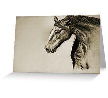 Megan's Horse Greeting Card