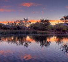 Reflections by Judylee
