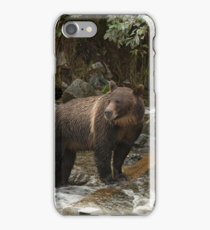 On the hunt - Great Bear Rainforest, Canada iPhone Case/Skin