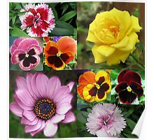 Sunkissed Summer Flowers Collage - Unframed Poster