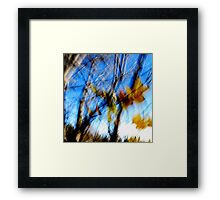 Remnants of Autumn Framed Print