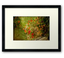 rainy flowers... Framed Print
