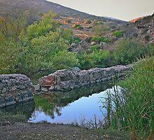 Old Mission Dam-Historic Landmark by heatherfriedman