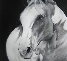 Equestrian Beauty by Carrie Jackson