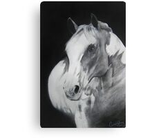 Equestrian Beauty Canvas Print