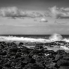 Ocean Spray by Luke Griffin