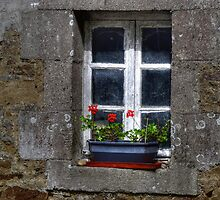 Old house by jean-jean
