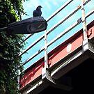 Bridge Over Baileyfield Road by Paul Mudie