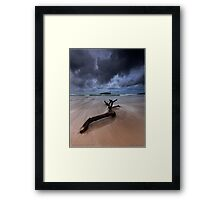 Fingal Heads Driftwood - Fingal Heads - Northern NSW - Australia Framed Print