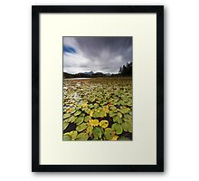 Clarrie Hall Dam - Northern NSW - Australia Framed Print