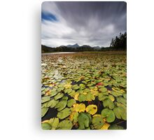 Clarrie Hall Dam - Northern NSW - Australia Canvas Print