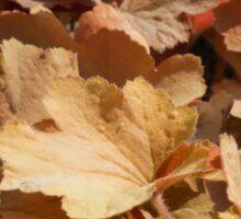 leaf background Sticker