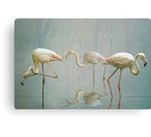 Flamingo Mist Canvas Print