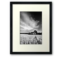 Have You Forgotten Me? BW Framed Print