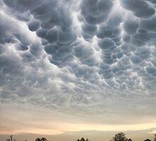 Scary Storm  by Carolyn  Fletcher