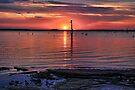 Red Sky At Night by Carolyn  Fletcher