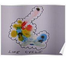 Life Cycle Poster