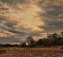 Stormy Sky by Carolyn  Fletcher
